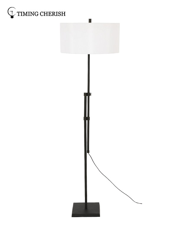Timing Cherish modern metal floor lamp factory for home-3