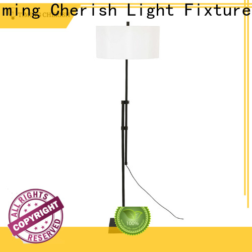 Timing Cherish stylish metal floor lamp factory for home