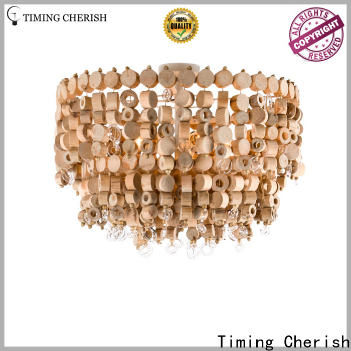pendant Ceiling Lights chip for business for hallway